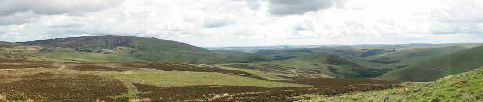 Northumberland Scene